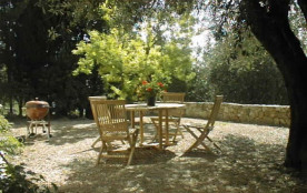 Dining area under the ancient olive tree