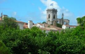 Bel appartement F2, sur l'île de Ré, à Saint Martin de Ré, capitale de l'île, près de La Rochelle en Charente Maritime