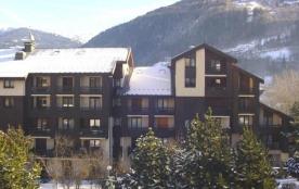 Appartement 2 pièces coin montagne 4 personnes (223)