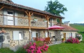 GITE CANTAL*** Retour à la ferme, maison de charme avec piscine, farniente, calme, douceur en septembre - Jussac
