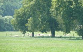 location vacances en Bresse