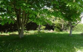 Jardin à l'arrière de la villa