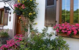 Gîte le Magnolia  2 à 6 personnes pour vacances detente en Alsace - Saint Pierre Bois