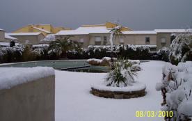 sous la neige....