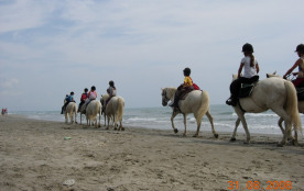 ballade a cheval. centre Equestre en face du camping