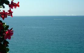 L'endroit rêvé pour les admirateurs de grand air marin... depuis la terrasse....