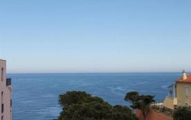 FR-1-309-3 - Appartement 2 pièces vue mer, banyuls-sur-mer