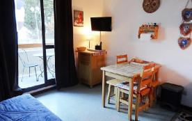 Appartement 1 pièces 3 personnes (21)