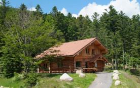 Les Vosges, magnifique chalet rondins tout confort 14p, 150m², 4 ch, 2 salles de bain, calme