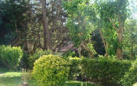 jardin depuis la terrasse