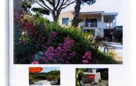 Location studio Coeur sur mer - Presqu'ile de Saint Tropez