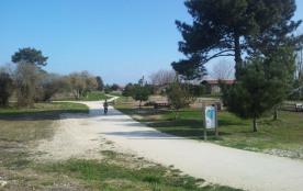 Sentier littoral à 50 mètres