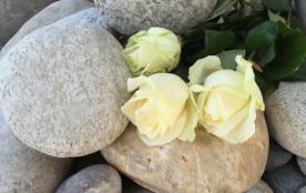 Gîtes de France Des Galets et des Roses