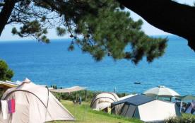 Situé en Côtes d'Armor, beauté sauvage de la Bretagne, le Camping BELLEVUE vous attend avec ses 1...