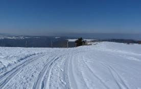 idéal pour le ski nordique