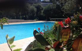 Beau studio, terrasse, piscine, plage , pinède (festival jazz) et restaurants à 10 mn à pied; Remparts et Cap d'Antibes