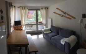 AU PIED des PISTES , lumineux  Appartement  à Corrençon en Vercors 5 à 6 personnes