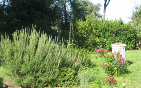 un coin du jardin autour de la maison