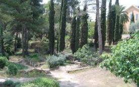 jardin vue sur le parc