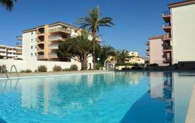Sainte Maxime (83) - Centre - la Palmeraie 1. 2 pièces - 40 m² environ - jusqu'à 4 personnes. Une...