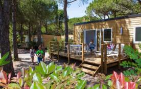 Camping La Baume La Palmeraie, 240 emplacements, 540 locatifs