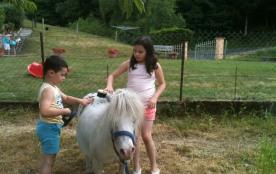 Parc animalier - Poney Tonnerre