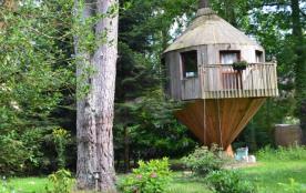Cabane perchée, hébergements insolites - Arbonne-la-Forêt