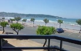 Vue sur la plage et la côte espagnole