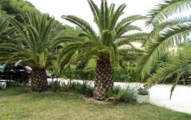 Jardin palmeraie