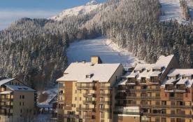 Appartement T3 Duplex Montagne 8 P. Vacances Ski