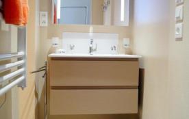 Salle d'eau ( lavabo )