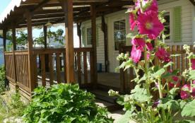 Le camping des Acacias vous propose plusieurs solutions de location au cœur du camping : situé au...