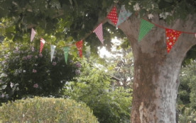 jardin, platane, ombrage naturel