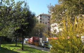 Violetta Roma