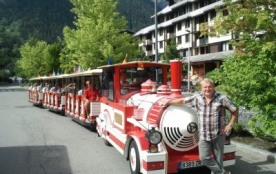 petit train de chamonix