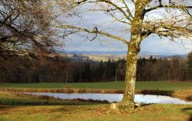 Vue du Gite sous le soleil Hivernal du parc, étang et campagne à perte de vue