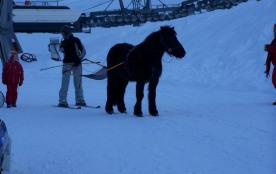 skis a cheval