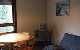 Studio coin montagne 4 personnes (11)