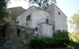 maison a louer Patrimonio Haute Corse (contacter uniquement par mail)