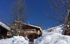 Chalet 14 personnes spa sauna Alpe D'Huez à 200 m de la piste le Village