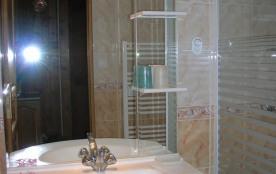 salle de bains: lavabo et douche