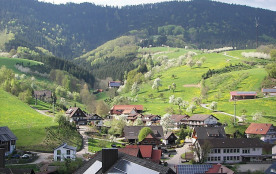 Appartement pour 3 personnes à Oberharmersbach