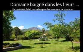 Domaine avec Villas(2à8 pers.)& piscine au cœur d'un beau parc fleuri
