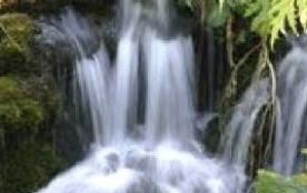 cascade au jardin de la Jaysinia