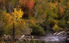 Automne (vallée du Rioumajou)