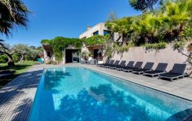 squarebreak, Tropical paradise on the Saint Tropez peninsula