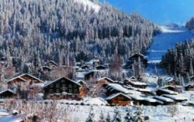 Faites le choix de vacances familiales réussies au Pays du Mont Blanc !