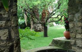 Jardin vu du puits