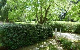 FR-1-366-317 - Le Tilleul du Parc de la Dame