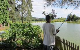 Partie de Pêche à l'étang, au Masbareau, Gite, Royères Haute-Vienne Limousin